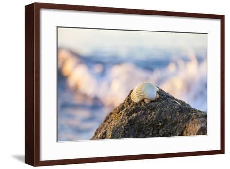 Shellview Surf-Chris Moyer-Framed Art Print