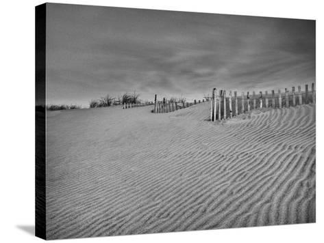 Anglesea Moire II-Geoffrey Ansel Agrons-Stretched Canvas Print