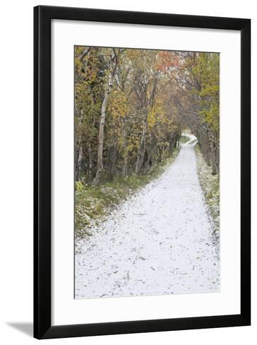 Snow Way 1-Moises Levy-Framed Art Print