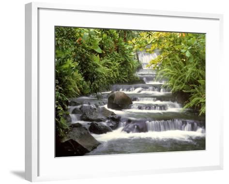 Terraced Falls-Monte Nagler-Framed Art Print