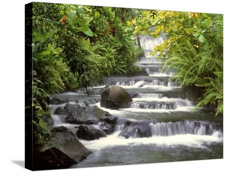 Terraced Falls-Monte Nagler-Stretched Canvas Print