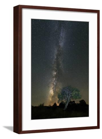 Stars over Pinon-Michael Blanchette Photography-Framed Art Print