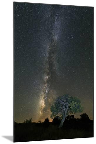 Stars over Pinon-Michael Blanchette Photography-Mounted Photographic Print