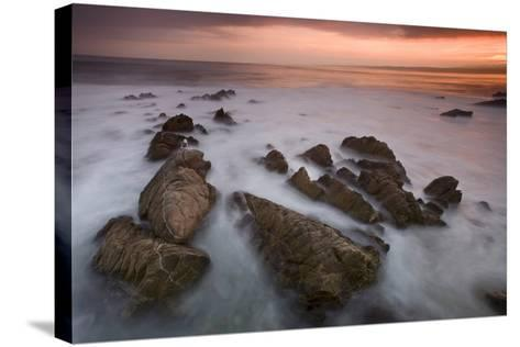Monterey (97)-Moises Levy-Stretched Canvas Print