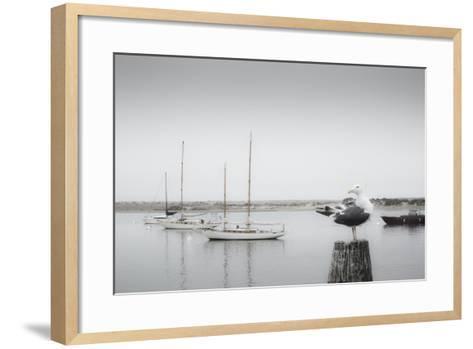 Four Boats & Seagull-Moises Levy-Framed Art Print