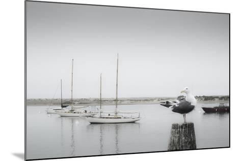 Four Boats & Seagull-Moises Levy-Mounted Photographic Print