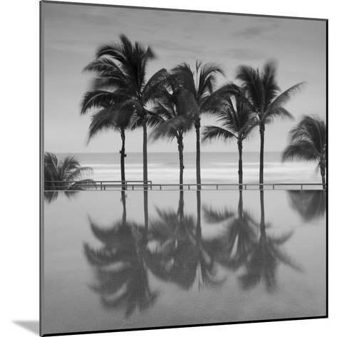 6 Palmeras-Moises Levy-Mounted Photographic Print