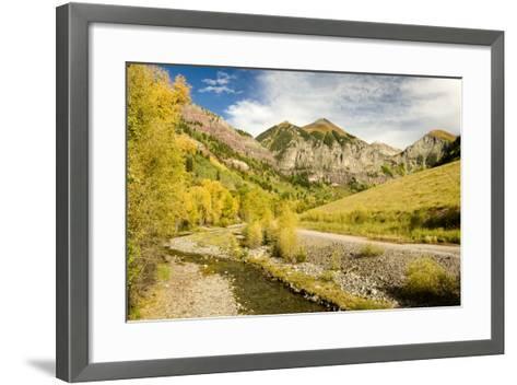 Aspen Yellows-Michael Blanchette Photography-Framed Art Print