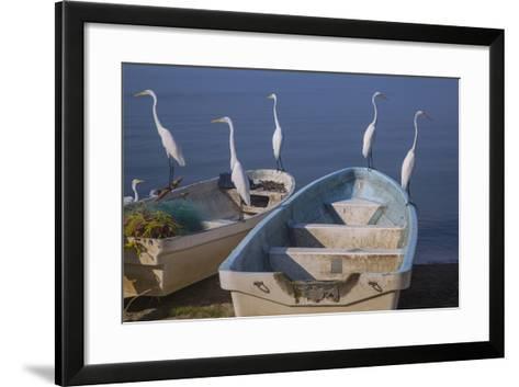 Garzas-7-2-Moises Levy-Framed Art Print
