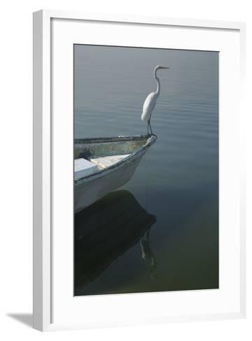Garzas-6-2-Moises Levy-Framed Art Print