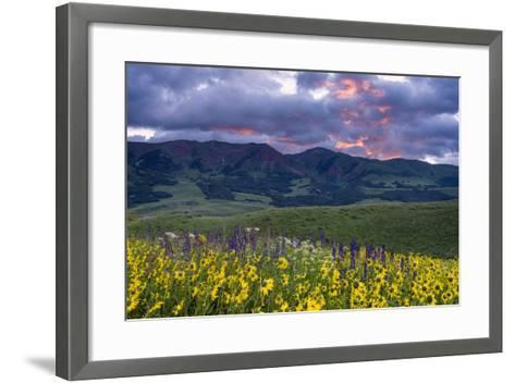 Crimson Flare-Michael Blanchette Photography-Framed Art Print