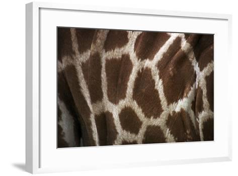 Hide II-SD Smart-Framed Art Print