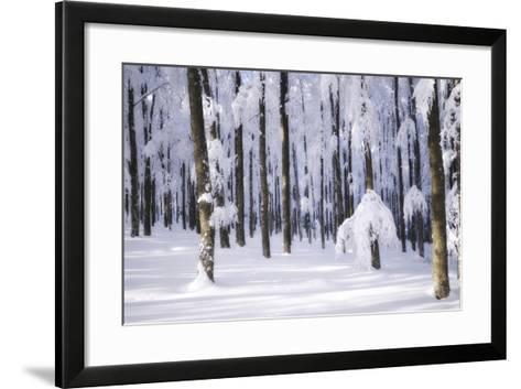 White Muslin-Philippe Sainte-Laudy-Framed Art Print