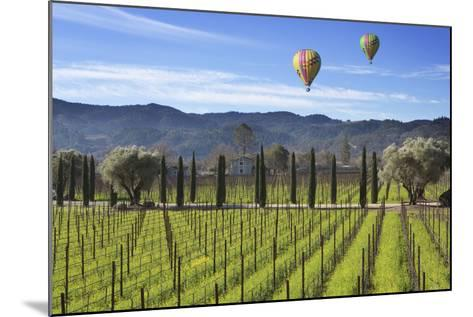 Napa Valley 1-Robert Hansen-Mounted Premium Photographic Print