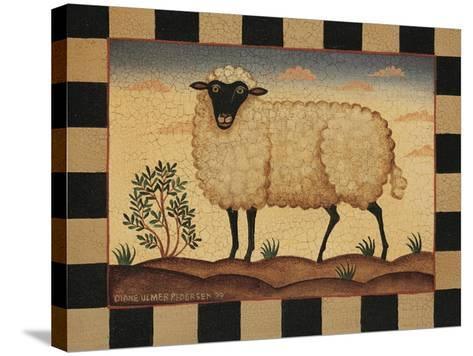 Farm Sheep-Diane Pedersen-Stretched Canvas Print