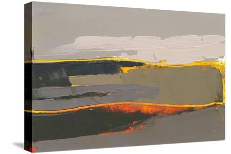 Ceide Study IV-Grainne Dowling-Stretched Canvas Print