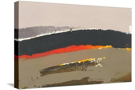 Ceide Study III-Grainne Dowling-Stretched Canvas Print
