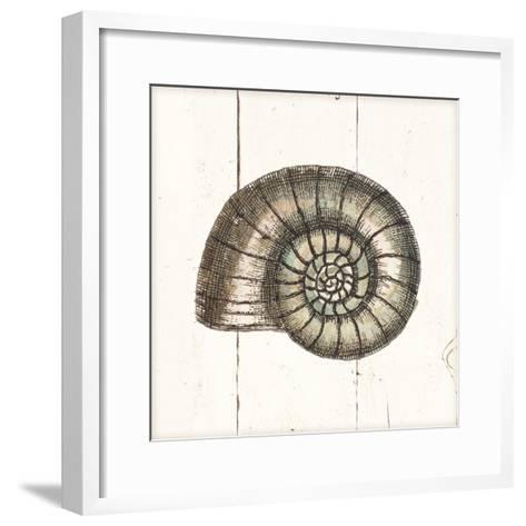 Shell Sketches I Shiplap-Wild Apple Portfolio-Framed Art Print