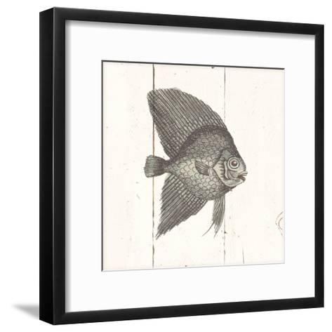 Fish Sketches III Shiplap-Wild Apple Portfolio-Framed Art Print