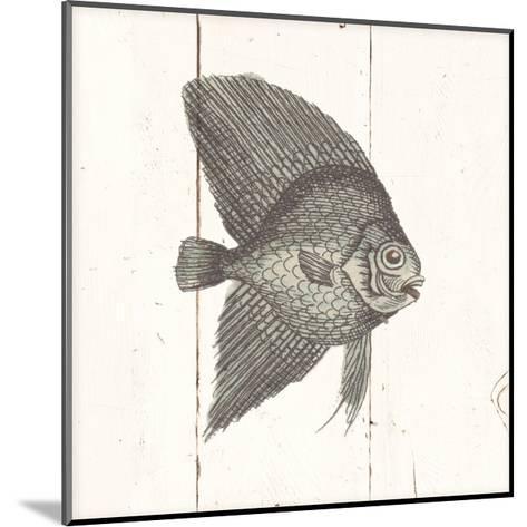 Fish Sketches III Shiplap-Wild Apple Portfolio-Mounted Art Print