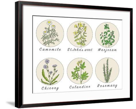 Set of Spices, Medicinal Herbs and Officinale Healing Plants Icons. Hand Drawn Illustrations. Botan- HappiestSimm-Framed Art Print