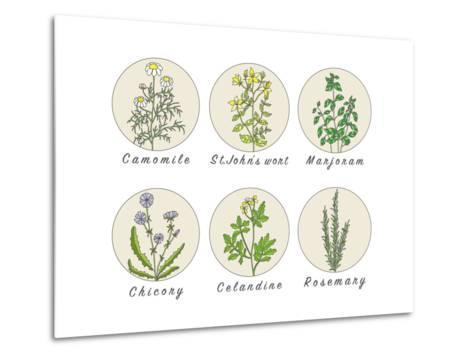 Set of Spices, Medicinal Herbs and Officinale Healing Plants Icons. Hand Drawn Illustrations. Botan- HappiestSimm-Metal Print