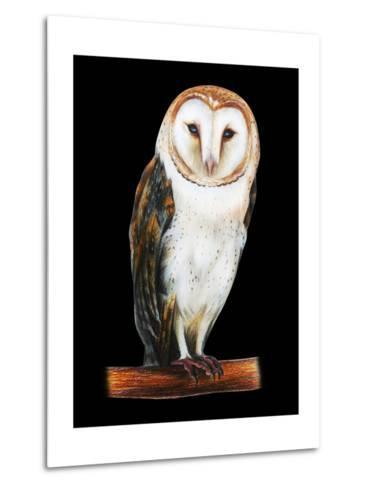 Barn Owl Drawing on Black Background- viktoriya_art-Metal Print
