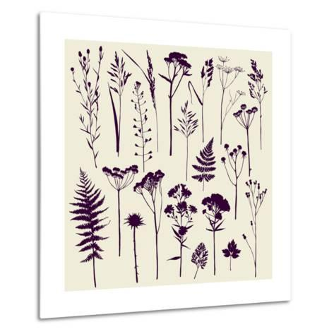 Set of Illustrations of Plants. Herbarium. Silhouettes. Sketch. Freehand Drawing.- xenia_ok-Metal Print