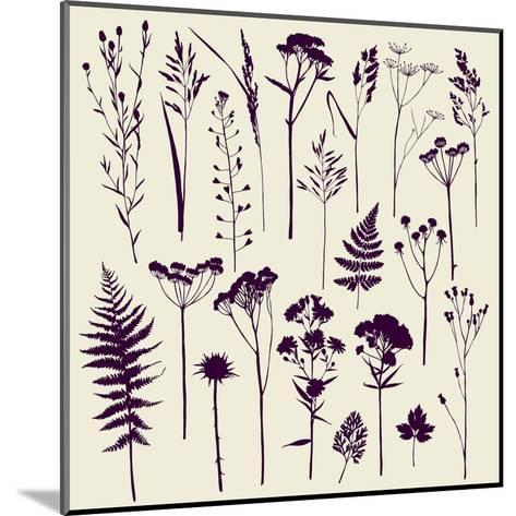 Set of Illustrations of Plants. Herbarium. Silhouettes. Sketch. Freehand Drawing.- xenia_ok-Mounted Art Print