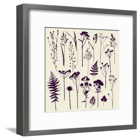 Set of Illustrations of Plants. Herbarium. Silhouettes. Sketch. Freehand Drawing.- xenia_ok-Framed Art Print