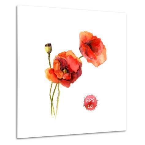 Poppy Flower. Watercolor Vector. Vintage Botanical Illustration-Le Panda-Metal Print