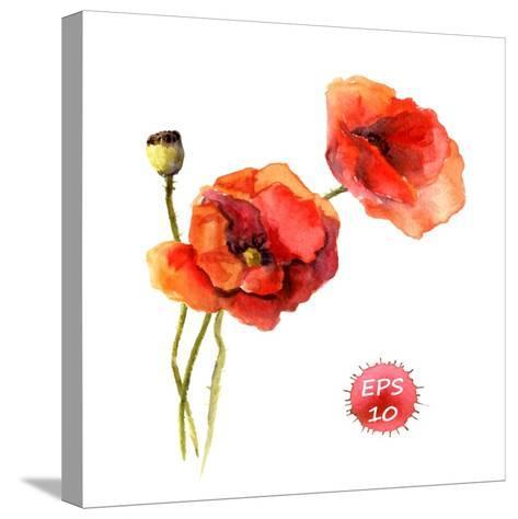 Poppy Flower. Watercolor Vector. Vintage Botanical Illustration-Le Panda-Stretched Canvas Print