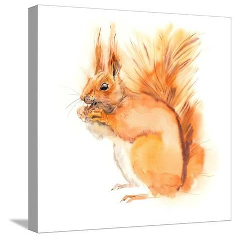 Squirrel Eats. Decoration with Wildlife Scene. Pattern from Forest Inhabitant. Watercolor Hand Draw-Marya Kutuzova-Stretched Canvas Print