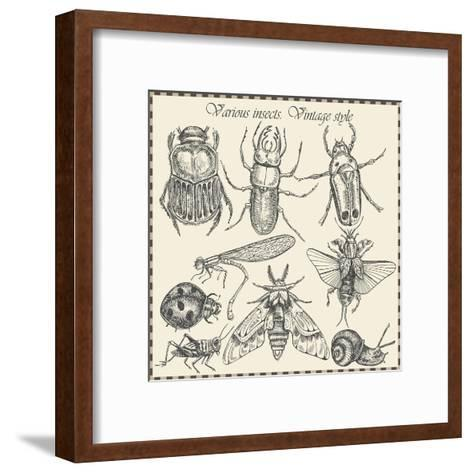 Vector Set Insects in Vintage Style- HorG-Framed Art Print