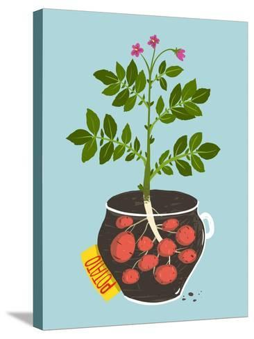 Growing Potato with Green Leafy Top in Pot. Vegetable Container Gardening Illustration. Raster Vari-Popmarleo-Stretched Canvas Print