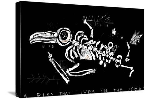 The Skeleton of a Bird Which Ate Plastic Waste and Died of Indigestion-Dmitriip-Stretched Canvas Print