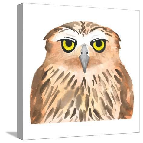 Owl Bird. Watercolor, Vector-Evgeniy Agarkov-Stretched Canvas Print