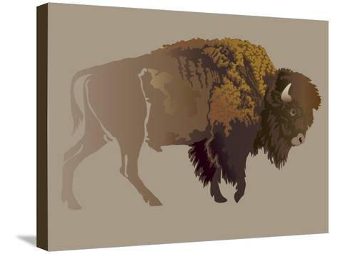 Buffalo. Hand-Drawn Illustration, Detailed Variant.- imagewriter-Stretched Canvas Print