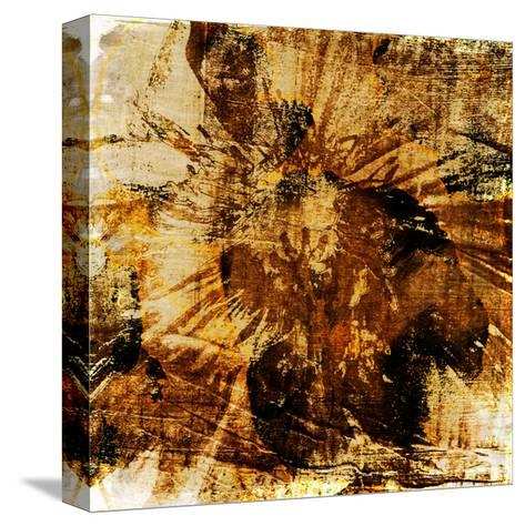 Poppy Gold II-Sia Aryai-Stretched Canvas Print
