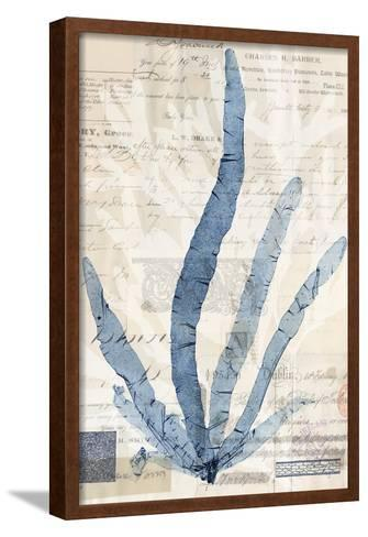 Seaweed Arrangement II-Vision Studio-Framed Art Print