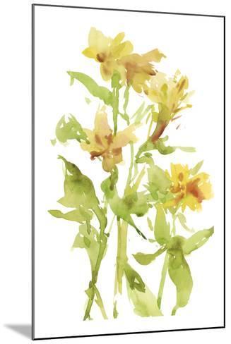 Watercolor Lilies II-Melissa Wang-Mounted Art Print