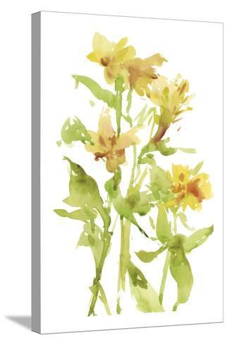 Watercolor Lilies II-Melissa Wang-Stretched Canvas Print