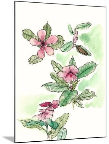 Floral Field Notes VI-Melissa Wang-Mounted Art Print
