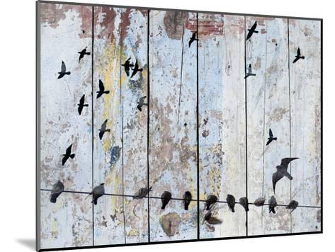 Birds on Wood III-Irena Orlov-Mounted Art Print