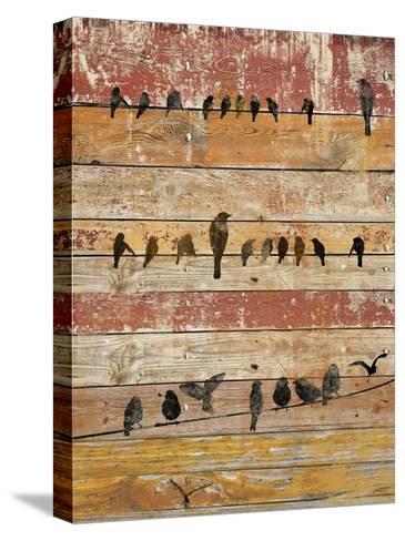 Birds on Wood II-Irena Orlov-Stretched Canvas Print