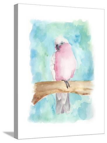 Sweet Tropical Bird III-Regina Moore-Stretched Canvas Print