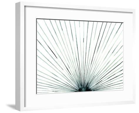 Strobe I-Grace Popp-Framed Art Print