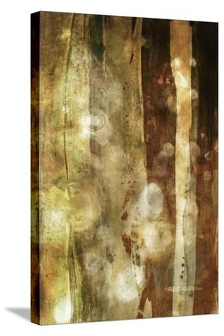 Golden Glow II-Sisa Jasper-Stretched Canvas Print