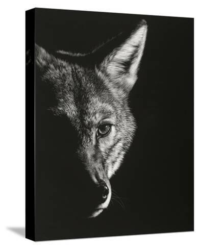 Black Glimpse VI-Julie Chapman-Stretched Canvas Print
