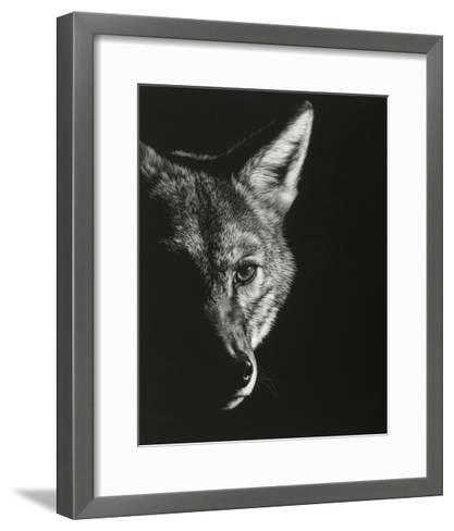 Black Glimpse VI-Julie Chapman-Framed Art Print